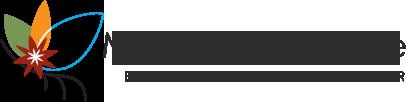 Mangrove Lodge – Accommodation & Tours – Zanzibar Logo